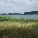 21. Вид на монастырский холм с противоположного берега Вымнянского озера