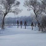 Крещенские морозы в Слободе (6)